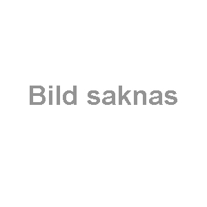 Collie  svart (519-S) Vikt: 9 kg Mått (H): 38 cm