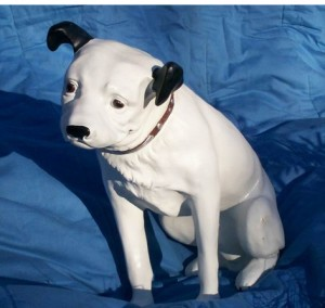 Hund (B-036)